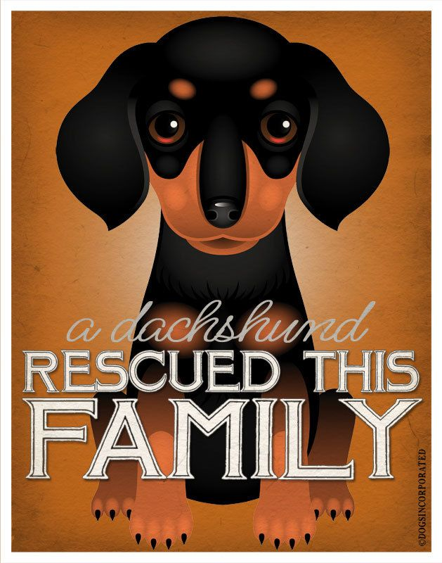 A Dachshund Rescued This Family 11x14 Custom door DogsIncorporated
