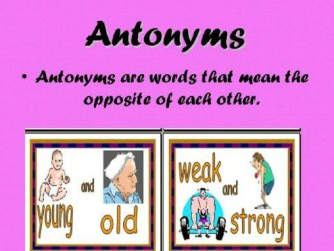 Antonym for assignment