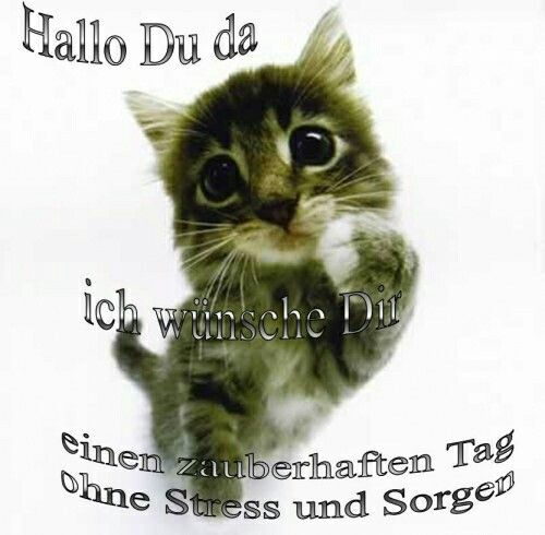 Good Morning Madam In German : Best images about dienstag mittwoch donnerstag on