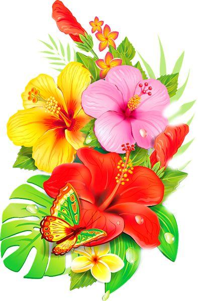 Plus de 25 id es magnifiques dans la cat gorie dessin - Dessin d hibiscus ...