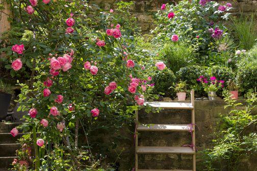 http://www.alavieenrose.fr/2010/06/un-jardin-meme-tout-petit-cest-la-porte-du-paradis/