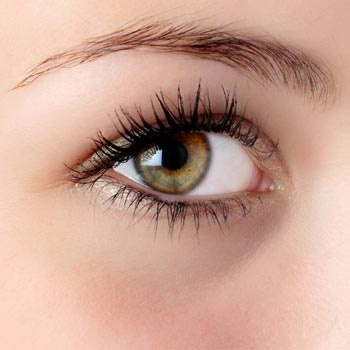 How long does it take for eyelashes to grow back?