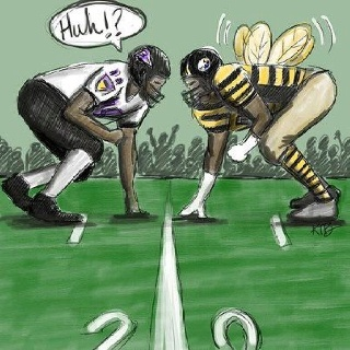 HA! hate the steeler's uniforms