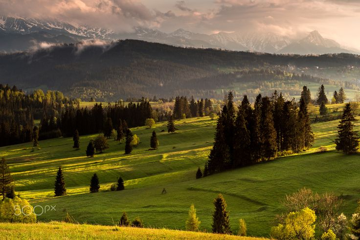 Evening light on the meadow - Evening light after rain in national park Pieniny...