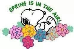 227 best images about Seasons With Snoopy on Pinterest ...