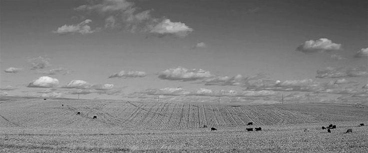 NEBRASKA (2013) DP: Phedon Papamichael - AR: 2.39:1 Director: Alexander Payne
