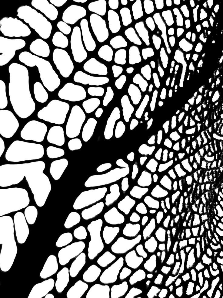 VORTEX - available for purchase from tresfolia.com