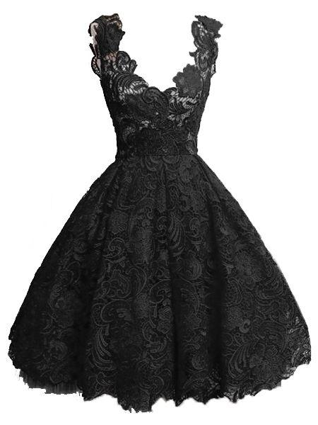 Stunning Sheer Lace Vintage Skater-dress 15