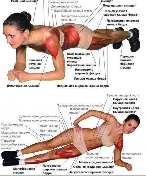 Упражнение Планка Для Похудения Живота Фото. Упражнение планка: умный комплекс на 30 дней — так ли эффективна для похудения и тренировки пресса, как принято думать?