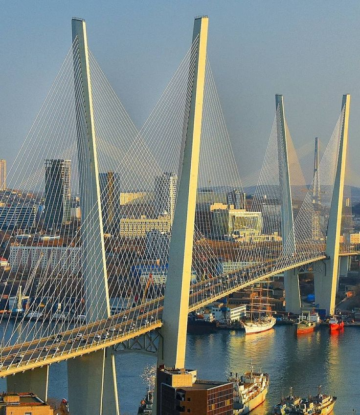 семь лет картинки золотого моста для профитролей можно
