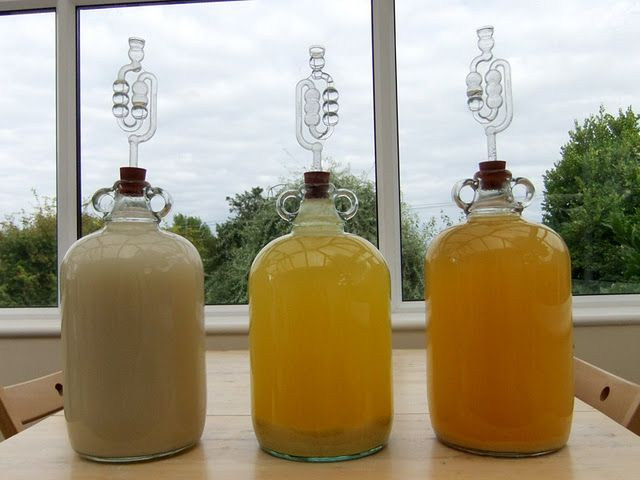 Making wine at home - the far left is Melon-Ginger, the centre one is Pineapple and the far right is apple.