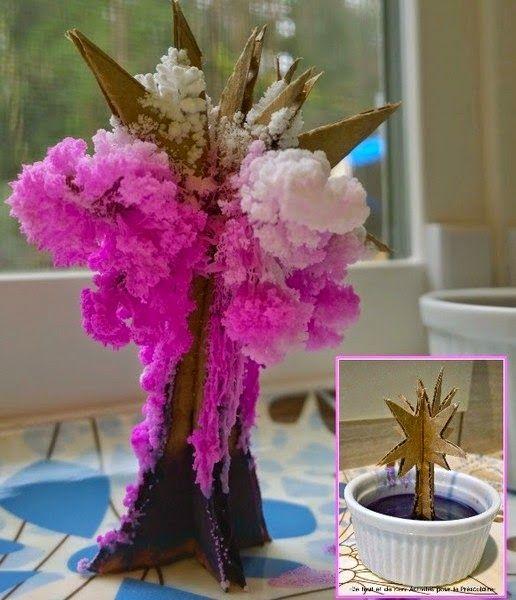 Bri-coco de Lolo: Faire fleurir un arbre magique en cristaux de sel