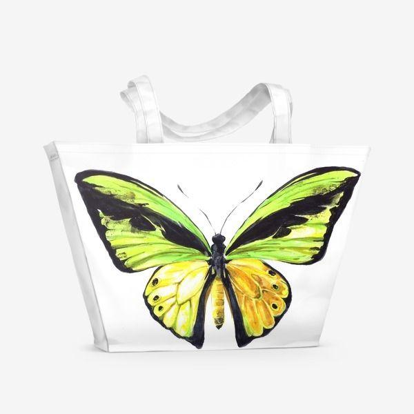 Пляжная сумка Бабочка Птицекрылка, Автор: Лена Мороз, Цена: 1500 р.