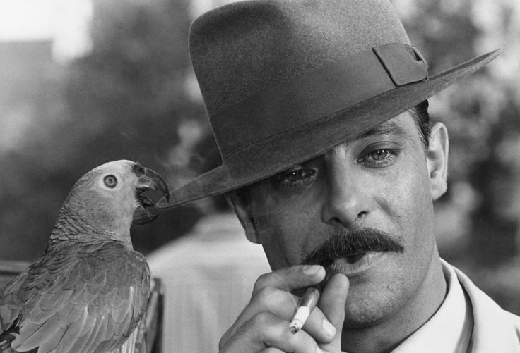 20 best images about giancarlo giannini on Pinterest ...