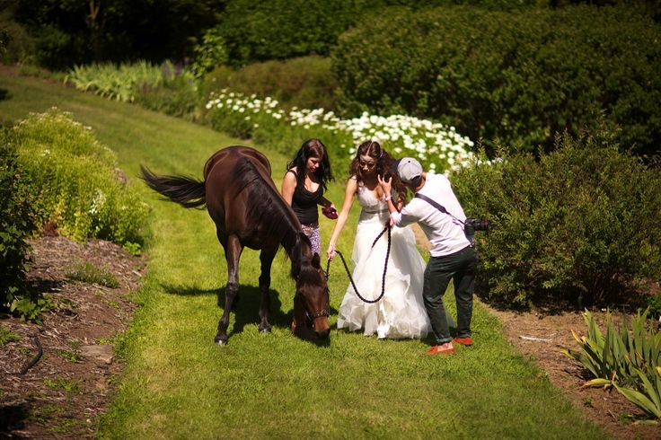 Soirée Productions orchestrated this amazing Pre Wedding Photoshoot @ Harpers Mansion, Berrima NSW Australia. We brought in a horse exclusively for this shoot! Hair by Verakon, Photography by Raffael Galardi, Wedding Gowns by Zahavit Tshuba, headpieces by @Viktoria Novak Horse 'Prada'