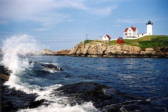 """Beauty spot on the Maine coast- Cape Neddick (aka """"Nubble"""") Lighthouse near York Beach."""