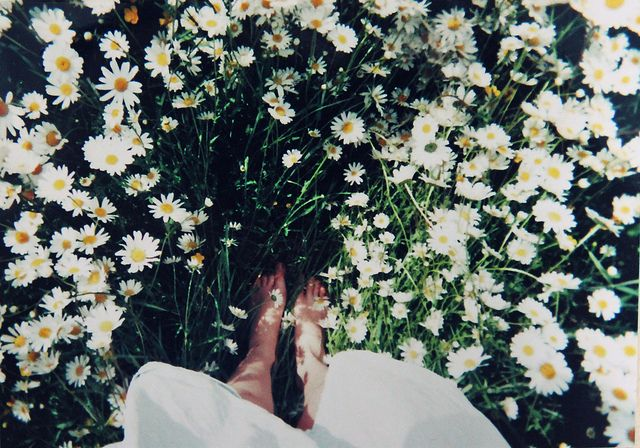 barefoot in a field of wildflowers