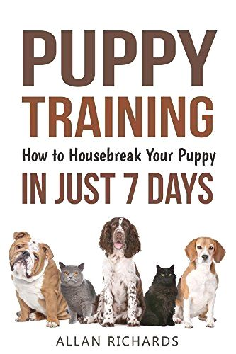 Best Dog Training Click The Image For Lots Of Dog Care And