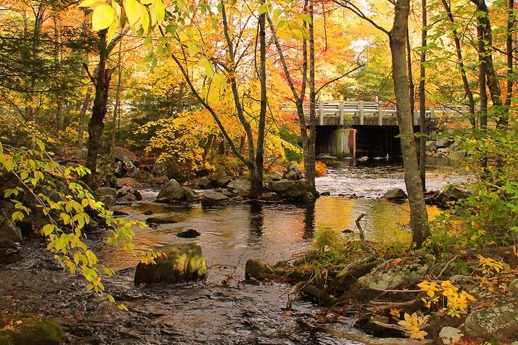 Another look at Camerons Brook, along Kejimkujik Scenic Drive, Route 8 in Nova Scotia.