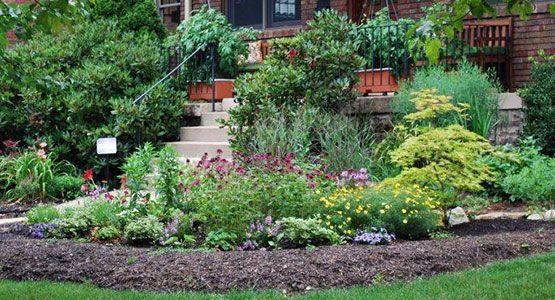 Rain Garden Alliance | Great list of plants for sunny and shady rain gardens