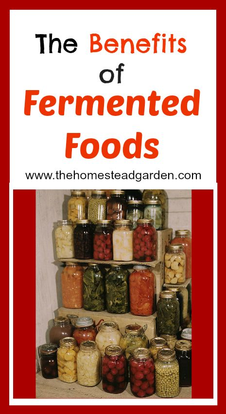 The Benefits of Fermented Foods