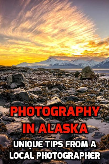 Best 25 local photographers ideas on pinterest amsterdam photography in alaska great tips from local photographer benjamin traylor httpmel365 junglespirit Image collections