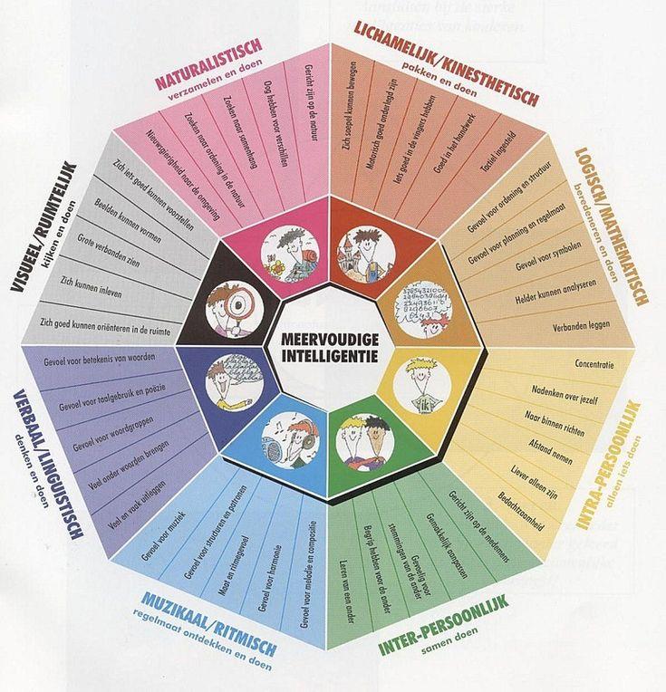 'Meervoudige intelligentie' overzicht in een achthoek.