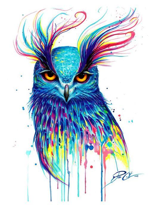 Búho Colorido. Owl colorful.