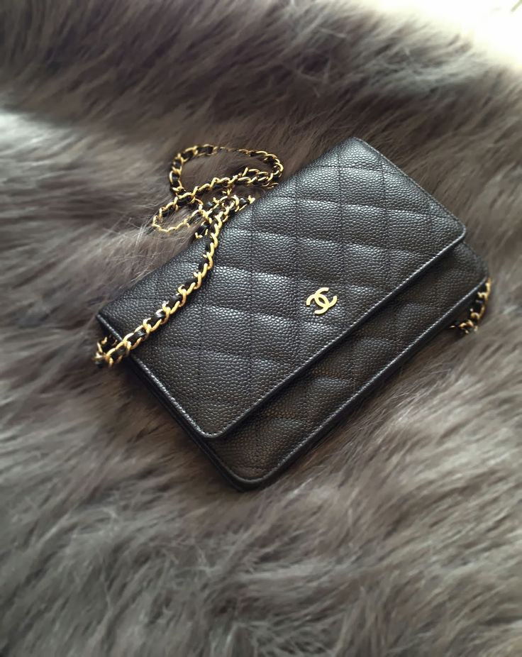 Chanel WOC but with silver Hardware