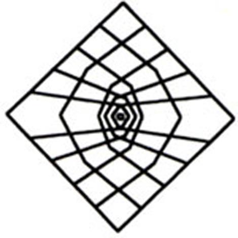 ARAÑA ABIERTA Se puede realizar cuando tenemos muchas patas. Se dan las vueltas de rigor a las patas. Se coge el par derecho de los dos pares centrales y se cruzan con los pares del lado izquierdo Vuelta-Cruz-Vuelta-Cruz. Después se coge el lado izquierdo de los dos pares centrales y se cruza con los pares del lado derecho. Posteriormente, dejamos pendientes estos pares, volvemos a dar vueltas a las patas que se encuentran entre medias de ellos y hacemos una araña normal.