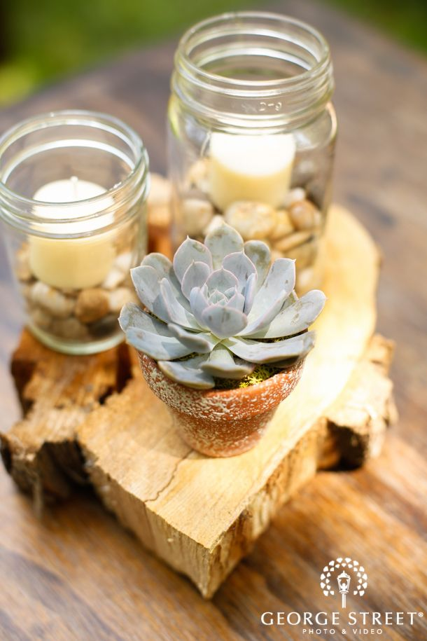 Potted succulents will always rank at the top of our list for favorite wedding decor! http://go.georgestreetphoto.com/l/9752/2013-07-12/fcrz5