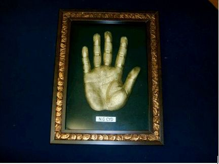 adult(father) hand