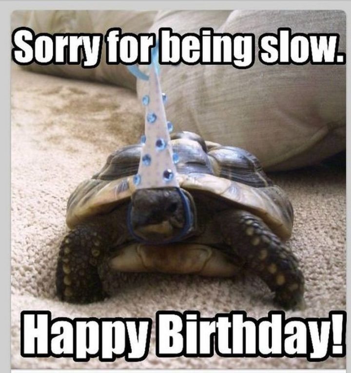 Are You Looking For Ideas For Happy Birthday Funny Navigate Here For Cool Birthday I Belated Birthday Meme Belated Birthday Funny Funny Belated Birthday Wishes