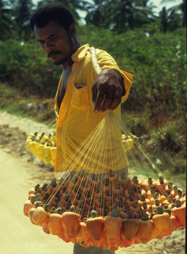 vendedor de cajú,nordeste, Brasil. foto: Silvestre Silva