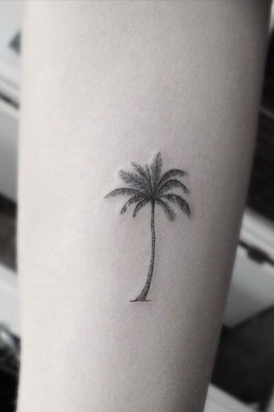 Best 25 palm tree tattoos ideas on pinterest for Palm tree ankle tattoo