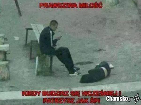 Chamskie obrazki, czarny humor