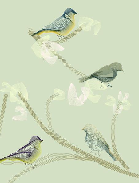 Vintage wallpaper - Birds