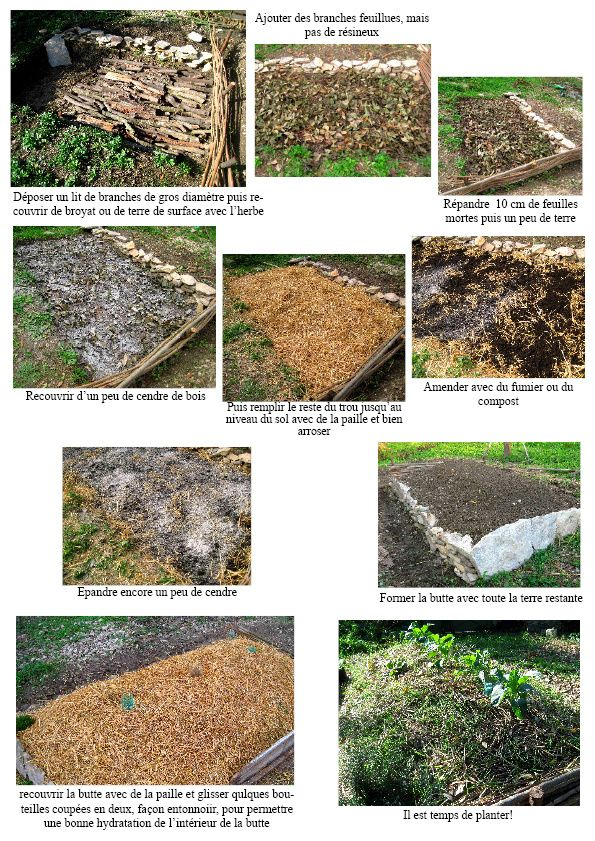 317 best images about permaculture on pinterest gardens lasagne and planters for Culture sur butte permaculture