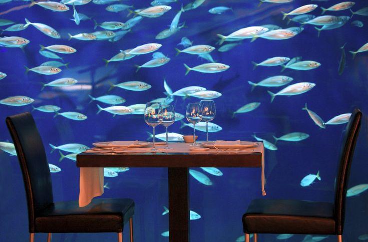 Una de las mesas del #Restaurante Submarino junto al #acuario. #Oceanografic #Valencia www.restaurantesubmarino.es