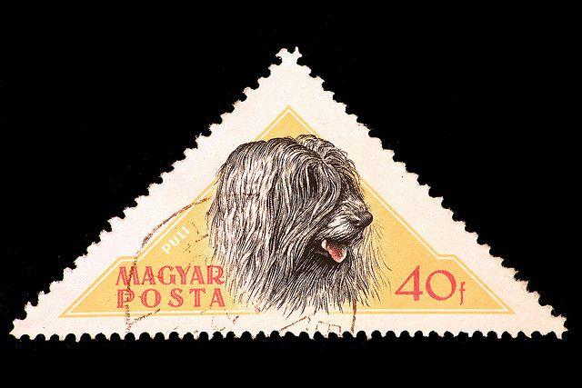 puli dog Magyar Posta - Puli by laszlo-photo, via Flickr