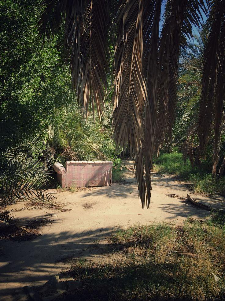 Anandoned magic garden
