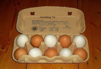 Ich werf doch nichts weg :) Tip, wie Ihr herausfindet, ob die Eier noch frisch sind. Photo by @Katharina Gessinger