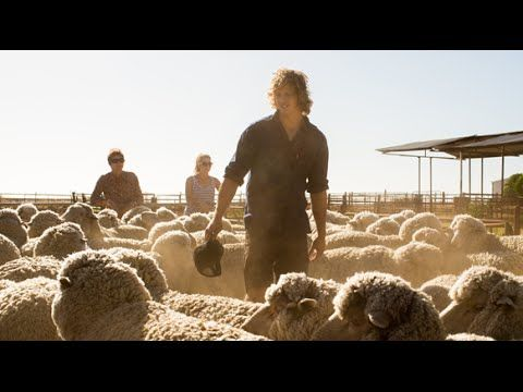 Fyfe joins with The Woolmark Company for the campaign Fibre of Football.
