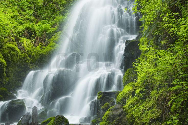 Fairy Falls - Fototapeter & Tapeter - Photowall