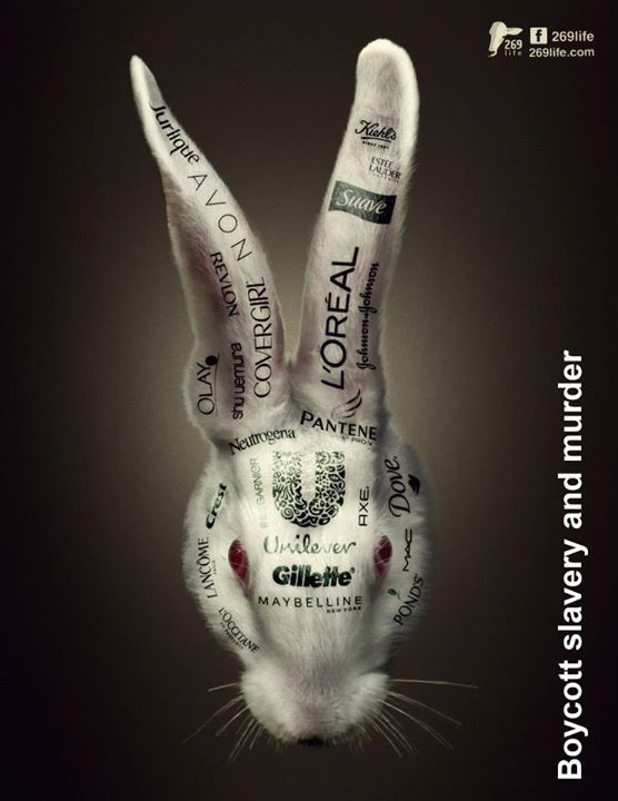 These companies use animals to test their products, torturing them, hurting…