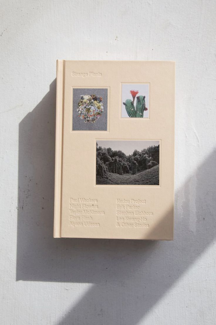 Strange Plants is a series that celebrates plants in contemporary art. The book features the work of 30 artists, and explores what these artists think about pla