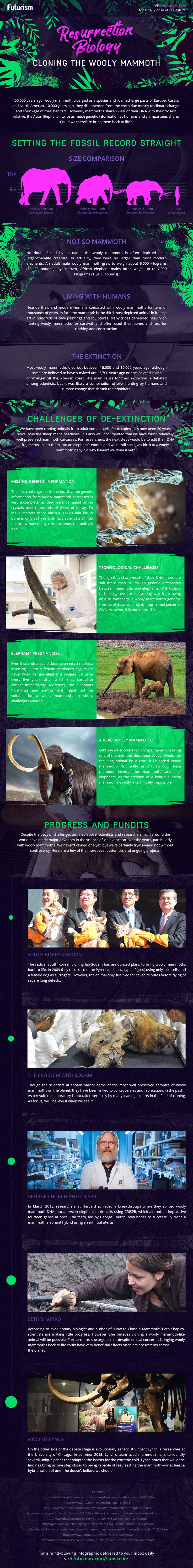 resurrection biology wooly mammoth infographic
