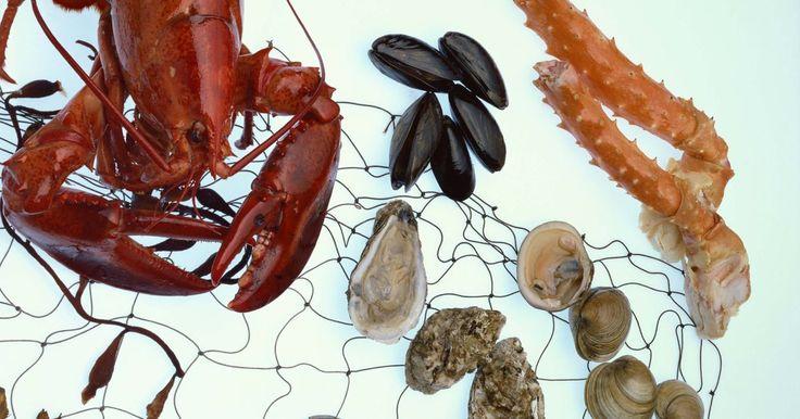 ¿Cuánto tiempo hervir cangrejo rey y ostras al vapor?. Los mariscos se pueden preparar en una variedad de maneras, asarlos a la parrilla o salteados. Un método de cocinar cangrejo y las ostras es al vapor. Cocer al vapor ayuda a mantener el sabor de los mariscos y da como resultado una carne húmeda, ideal para comer directamente de la olla de vapor. A pesar de que los tiempos de cocción varían, ...