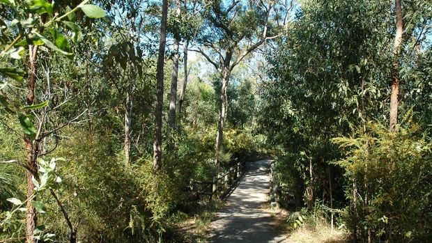 Twelve great Brisbane walks