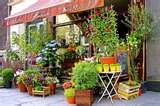 love streetfront flower shops in old neighborhoods!